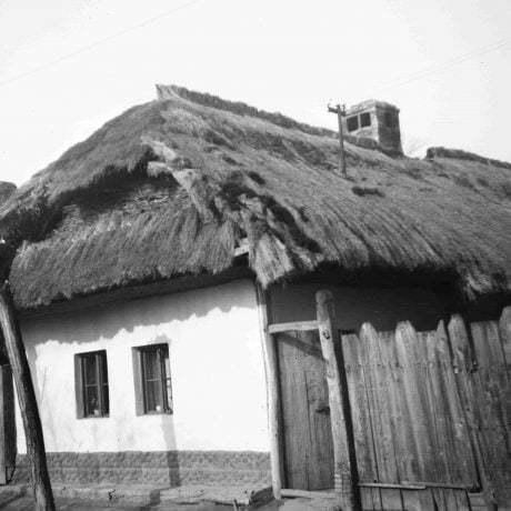 Obytný dom Pata. Prízemný dvojosový dom, pravdepodobne hlinený, omietnutý, strecha polovalbová s podlomenicou, krytý slamou. © Igor Thurzo, 1954