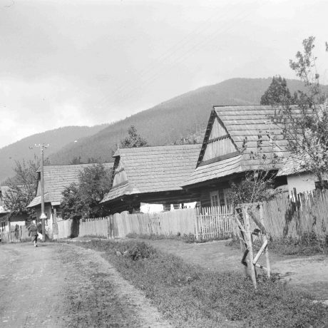 Rad domov Bacúch. Prízemné dvojosové domy, väčšinou zrubové, strecha sedlová, krytina šindľová. © Igor Thurzo, 1955