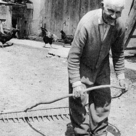 Spôsob práce so zahrabovacími hrabľami. Omastiná, okr. Bánovce nad Bebravou. Archív negatívov Ústav etnológie SAV. Foto P. Slavkovský, 1973.