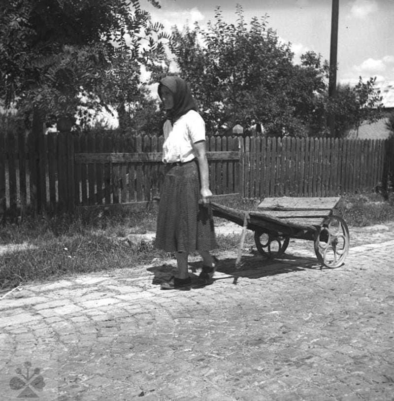 Žena ťahajúce dvojkolesový dopravný prostriedok