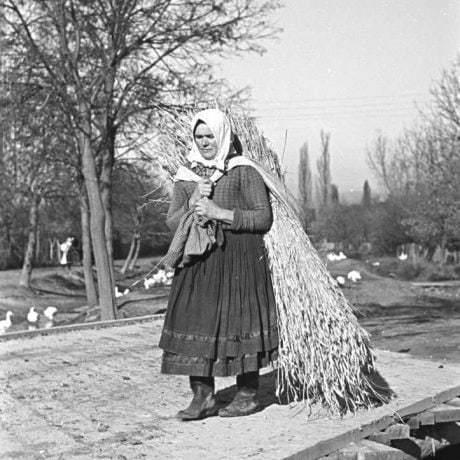 Nosenie ľanu v plachte. Dolný Lopašov (okr. Trnava), 1956. Archív negatívov Ústavu etnológie SAV v Bratislave. Foto: V. Törey
