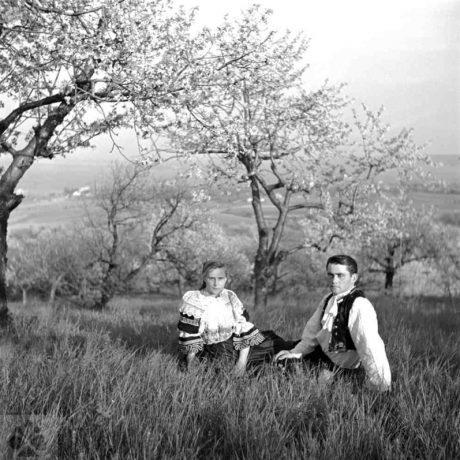 Mladý pár v čerešňovom sade. Dolné Orešany (okr. Trnava), 1956, Archív negatívov Ústavu etnológie SAV v Bratislave. Foto: V. Törey