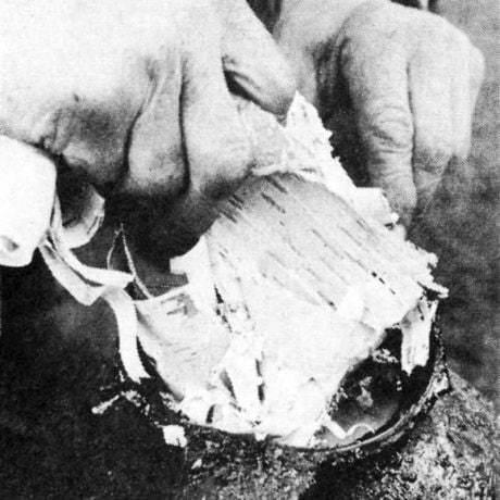 Tlačenie brezovej kôry do kanty – nádoby na výrobu smoly. Gemer. Prevzaté z Prasličková, M.: Brdárstvo a voštinárstvo v západnom Gemeri. Košice 1979, obr. 10.
