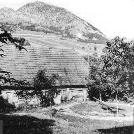 Gepeľ osadený za stodolou v záhrade. Dolná Súča