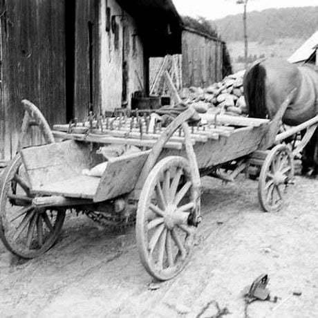 Kŕmenie koňa zapriahnutého do voza. Rabča (okr. Námestovo), 1970. Archív negatívov Ústavu etnológie SAV v Bratislave. Foto J. Botík.