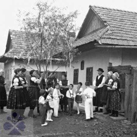 Chodenie s brezou. Kozárovce (okr. Levice), 1967. Národné osvetové centrum v Bratislave. Foto: T. Szabo