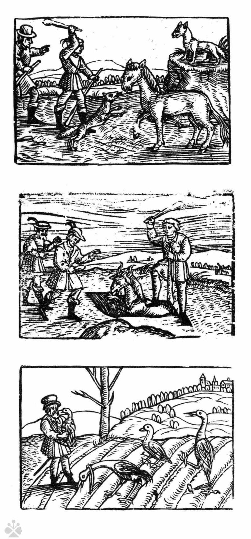 Tradičné spôsoby lovu: ubíjanie zvierat kyjom, chytanie do jamy a chytanie vtákov do slučiek. Prevzaté z: Slovensko. Ľud – II. časť. Bratislava 1975, s. 745.