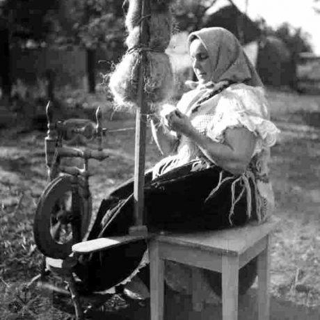 Pradenie z prísednej dvojstrannej praslice. Hrnčiarovce nad Parnou (okr. Trnava), 1952. Archív negatívov Ústavu etnológie SAV v Bratislave. Foto F. Hideg.