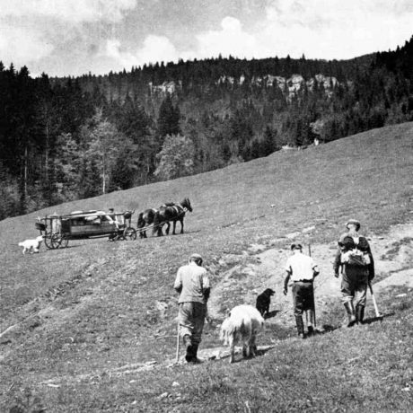 Sťahovanie salaša. Muránska Dlhá Lúka, Revúca. Archív negatívov Ústav etnológie SAV. Foto J. Kantár, 1961.