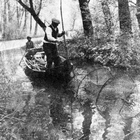 Lov rýb sieťovou vršou. Žitný ostrov, nedatované. Prevzaté z: J. Mjartan: Ľudové rybárstvo na Slovensku. Bratislava, 1984,s. 101.