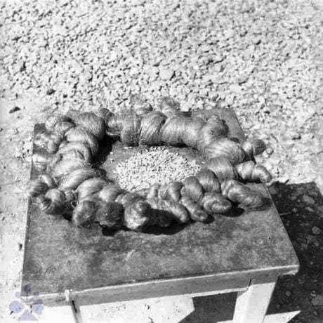 Rekonštrukcia uloženia venca spleteného z hrstí ľanu (kytky) s kôpkou obilia v strede