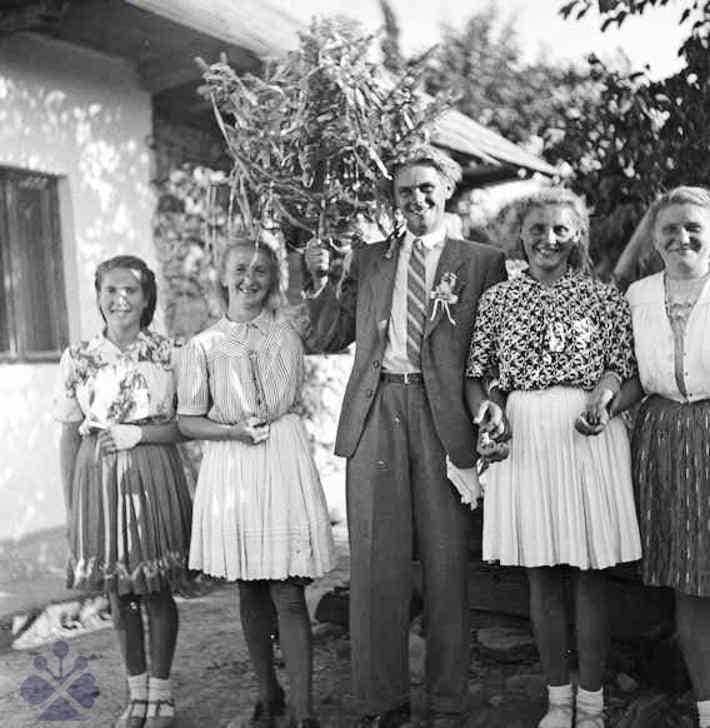 Svadobný stromec. Merník (okr. Michalovce), 1950. Archív negatívov Ústavu etnológie SAV v Bratislave. Foto: R. Ciho