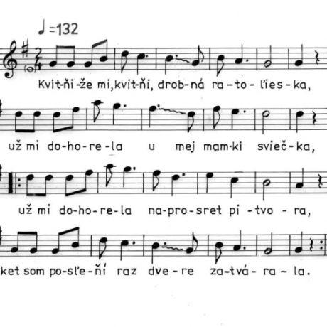 Svadobná z Hrušova (okr. Veľký Krtíš), 1977.