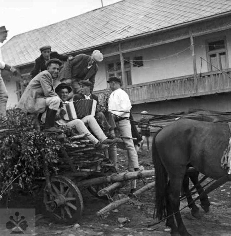 Rozvážanie briezok v predvečer turíčnych sviatkov. Telgárt (okr. Brezno), 1957. Archív negatívov Ústavu etnológie SAV v Bratislave. Foto: J. Paličková